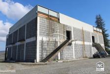 Działka na sprzedaż, Portugalia Pedome, 3790 m²