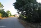 Działka na sprzedaż, Portugalia Assafarge E Antanhol, 12950 m² | Morizon.pl | 6099 nr3