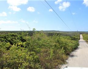 Działka na sprzedaż, Bahamy Scrub Hill, 1163 m²