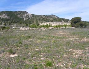 Komercyjne na sprzedaż, Hiszpania El Pinós / Pinoso, 72000 m²