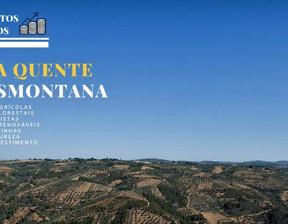 Działka na sprzedaż, Portugalia Arcas, 650000 m²